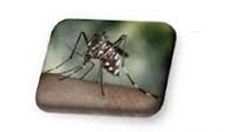 """Simposio """"Infecciones por Virus Zika y Virus Mayaro,¿Nuevas arbovirosis emergentes en las Américas?"""""""