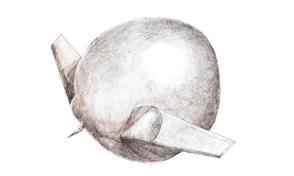 """El dibujo a la tinta sobre papel: """"Avión gordo"""