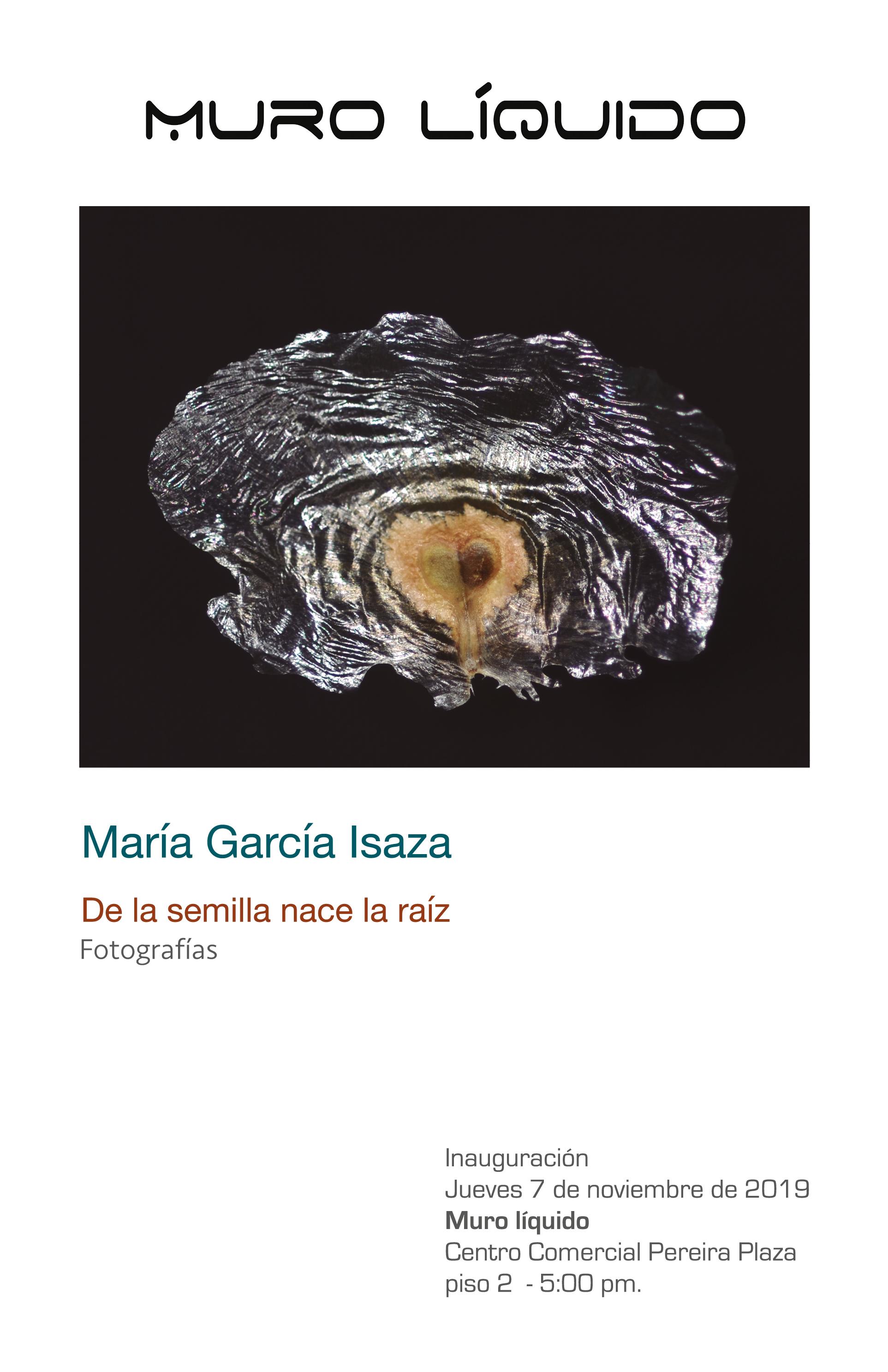 """Exposición  """"De la semilla nace la raíz"""", en el Muro Líquido del Centro Comercial Pereira Plaza"""