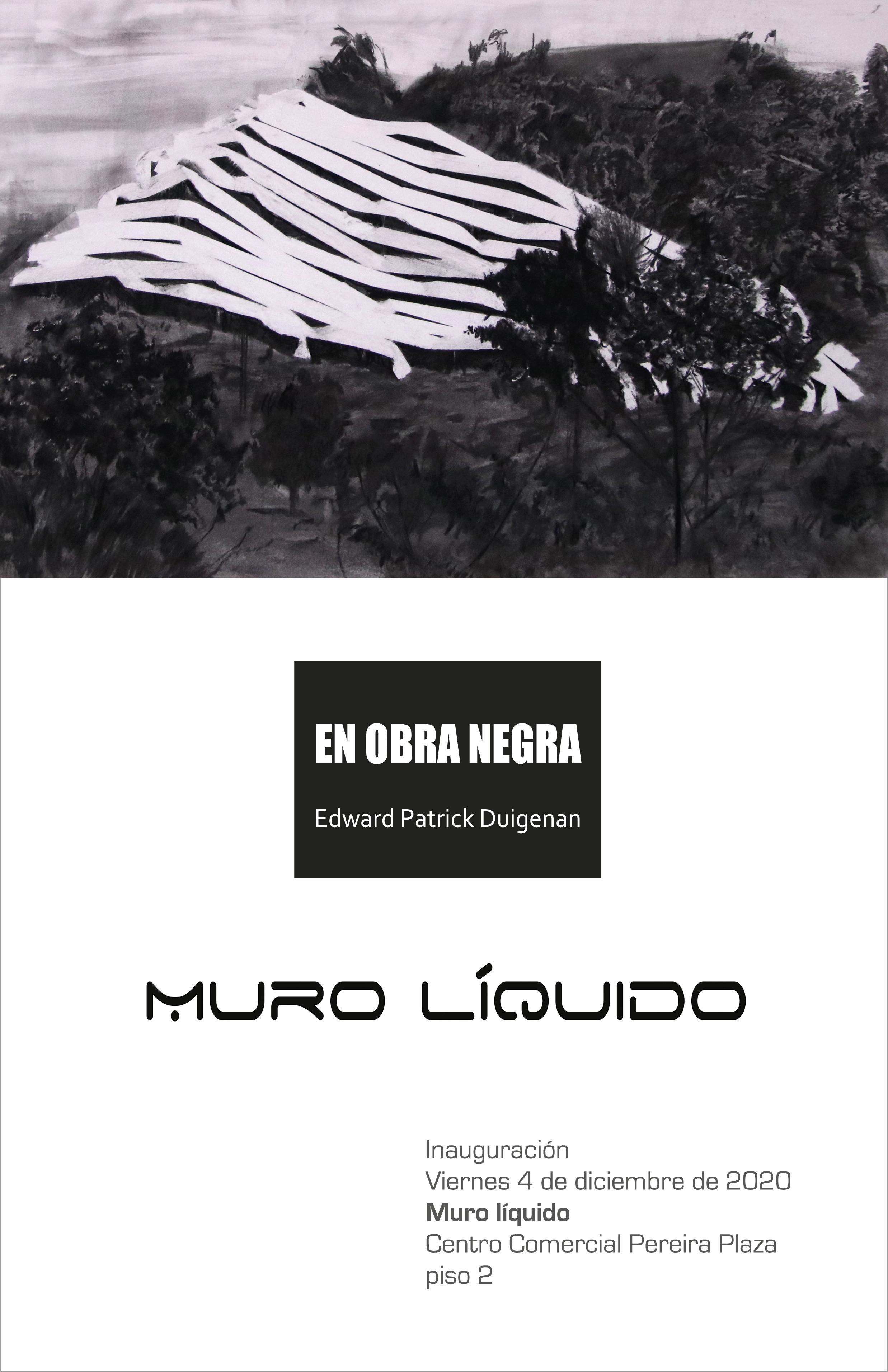 Exposición en obra negra, en el Muro Líquido del Centro Comercial Pereira Plaza