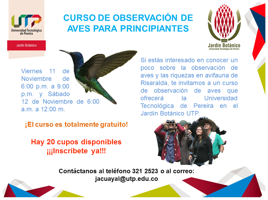 Curso de aves jard n bot nico for Jardin botanico cursos