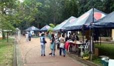Mercado Agro Ecológico UTP