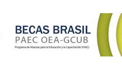 Sesión en vivo por Facebook Live para Becas en Brasil
