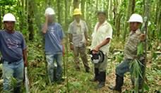 Mantenimiento_de_los_guaduales_del_bosque_en_la_UTP_34.jpg