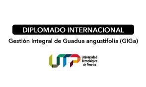 Diplomado Internacional Gestión Integral Guadua angustifolia 2018