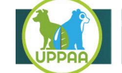 Encuentro Regional de Protección Animal – Avances legales, éticos y políticos en la defensa animal