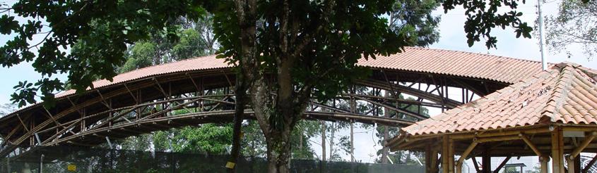 Imagen 2 carousel